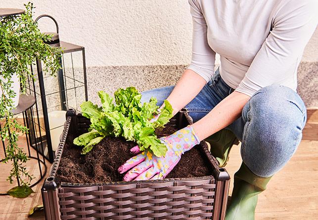 Ящик для цветов Grow