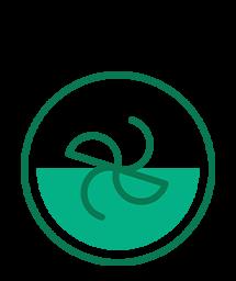 Экстрактор питательных веществ Nutribullet (Черный)